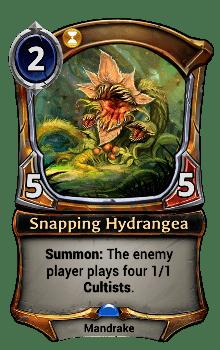 Snapping Hydrangea