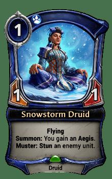 Snowstorm Druid