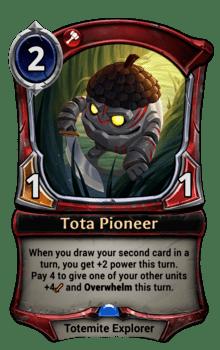 Tota Pioneer